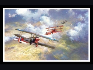 The Last Combat of the Red Baron -Frank Wootton